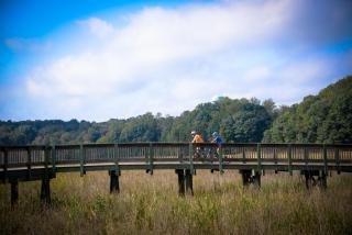 Walking on the Railway Trail